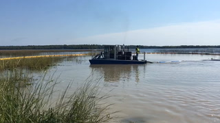 Treatment of starry stonewort on Big Turtle Lake