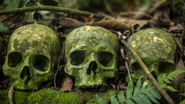 Why Did Ancient Peoples Alter Human Skulls?