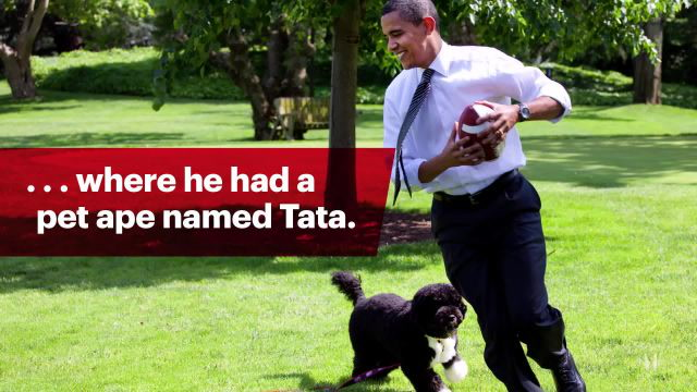 12 Facts You Never Knew About Barack Obama