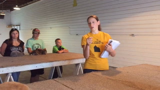 Teen teaches rabbit showmanship for Carlton County Fair
