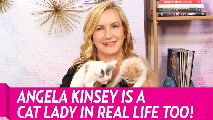 Angela Kinsey Is a Proud Cat Lady, Just Like Her 'Office' Character