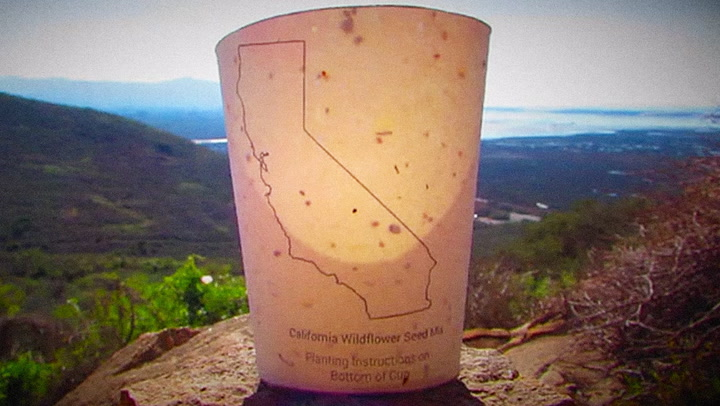 Litter To Your Heart's Content With This Seed-Bomb Coffee Cup