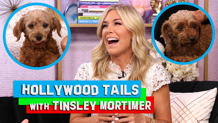 Tinsley Mortimer Says Adopting Two Dogs Is Fulfilling Her Motherly Needs