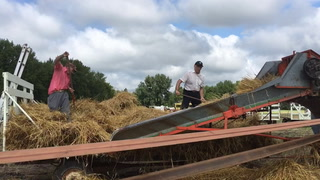 Sights and sounds of the Donnelly Threshing Bee
