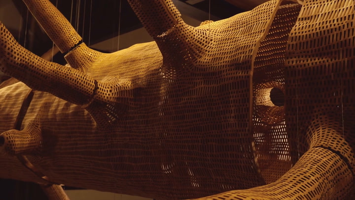 Transforming A 140-Year-Old Tree Into A Beautiful Wooden Lattice