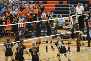Prep Volleyball: Tigers prepare for Section 3AA run