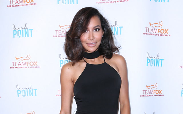 Glee Alumna Naya Rivera to Star in YouTube Red Step Up Revival
