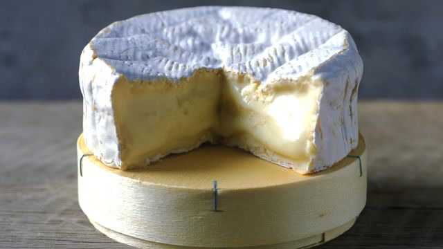 This Popular Cheese Is On The Brink of Becoming Extinct