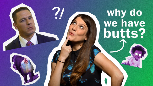 Anna's Science Magic Show Hooray: Why do we have butts?