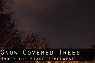 Snow Covered Trees Under the Stars Timelapse