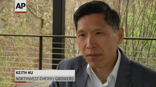Tariffs Would Impact US Cherries Growth in China