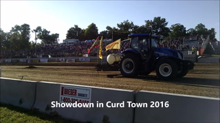 Local pullers at the Showdown in Curd Town