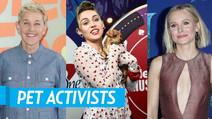 Celebrities Who Advocate for Animal Rights: From Miley Cyrus to Ryan Gosling