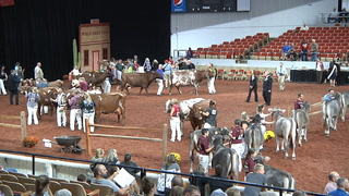 AgweekTV: World Dairy Expo (Full Show)