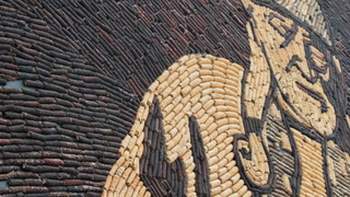 Farmer Wade Strand, of Mitchell, is contracted by the City of Mitchell for the corn used for the Corn Palace murals. Strand said about six weeks ago he wasn't sure if there would be corn to harvest to replace out the murals, but said things have picked up in recent weeks with the rain and anticipates having enough corn. (Matt Gade / Republic)
