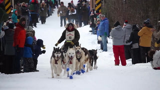 Starting line of the John Beargrease Sled Dog Marathon 2018