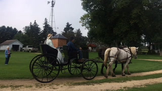 Restored 1890s Carriage