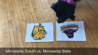 Very good dog predicts NCAA hockey tournament